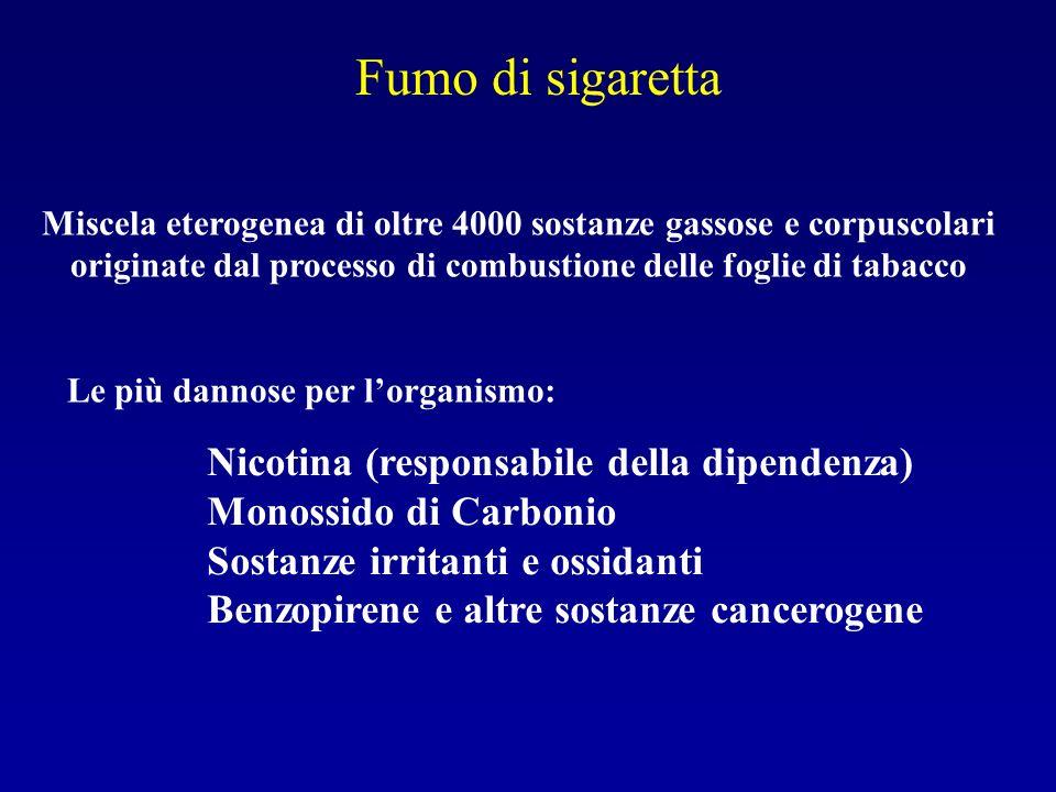 Fumo di sigaretta Miscela eterogenea di oltre 4000 sostanze gassose e corpuscolari originate dal processo di combustione delle foglie di tabacco Le pi