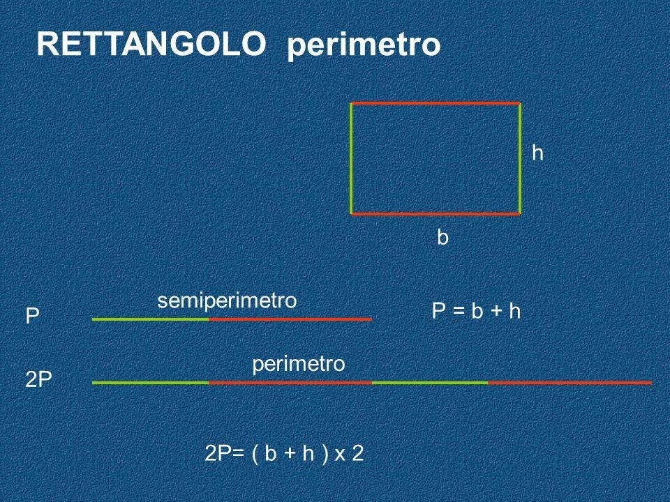 RETTANGOLO perimetro P = b + h semiperimetro P 2P perimetro 2P= ( b + h ) x 2 b h