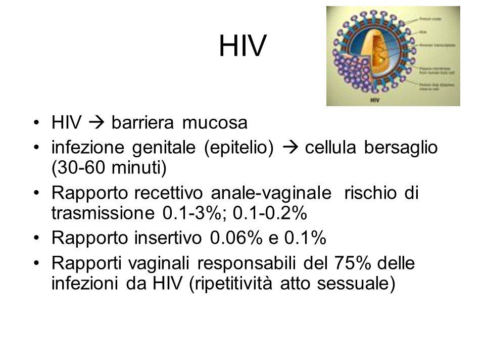 HIV HIV barriera mucosa infezione genitale (epitelio) cellula bersaglio (30-60 minuti) Rapporto recettivo anale-vaginale rischio di trasmissione 0.1-3%; 0.1-0.2% Rapporto insertivo 0.06% e 0.1% Rapporti vaginali responsabili del 75% delle infezioni da HIV (ripetitività atto sessuale)