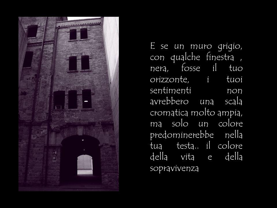 E se un muro grigio, con qualche finestra, nera, fosse il tuo orizzonte, i tuoi sentimenti non avrebbero una scala cromatica molto ampia, ma solo un c