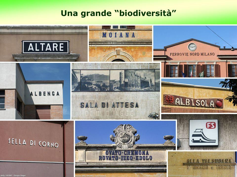 17 Una grande biodiversità