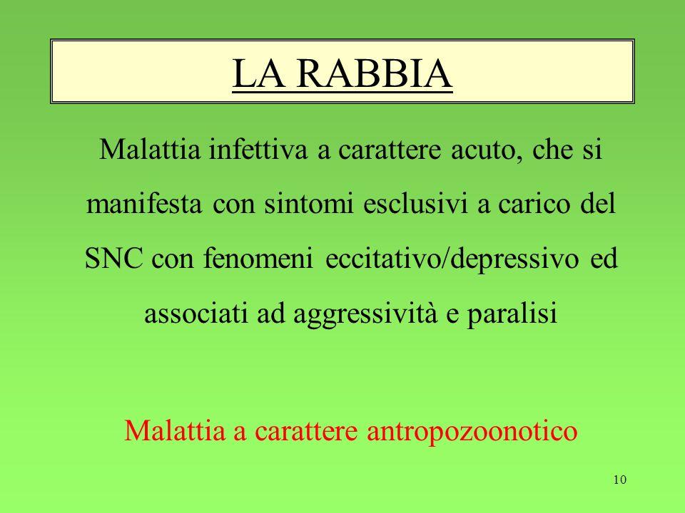10 LA RABBIA Malattia infettiva a carattere acuto, che si manifesta con sintomi esclusivi a carico del SNC con fenomeni eccitativo/depressivo ed assoc
