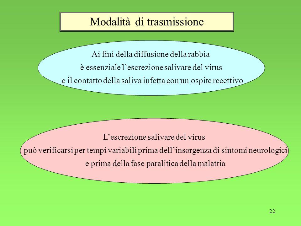 22 Modalità di trasmissione Ai fini della diffusione della rabbia è essenziale lescrezione salivare del virus e il contatto della saliva infetta con u