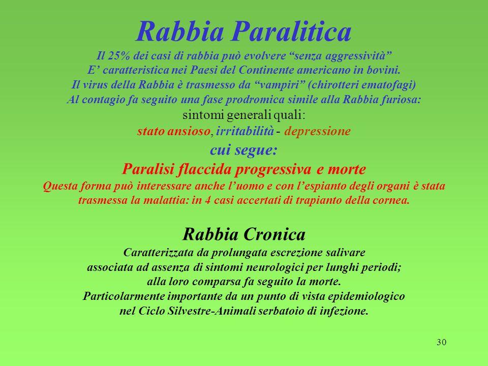30 Rabbia Paralitica Il 25% dei casi di rabbia può evolvere senza aggressività E caratteristica nei Paesi del Continente americano in bovini. Il virus