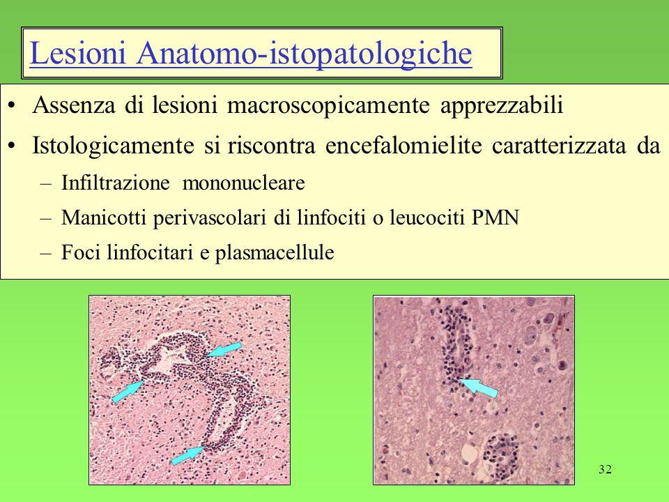 32 Assenza di lesioni macroscopicamente apprezzabili Istologicamente si riscontra encefalomielite caratterizzata da –Infiltrazione mononucleare –Manic
