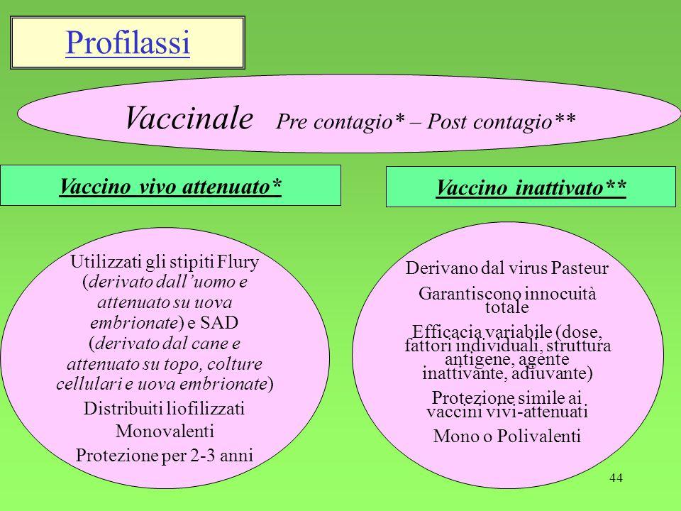 44 Profilassi Vaccino vivo attenuato* Vaccinale Pre contagio* – Post contagio** Vaccino inattivato** Utilizzati gli stipiti Flury (derivato dalluomo e