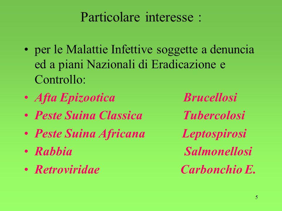 5 Particolare interesse : per le Malattie Infettive soggette a denuncia ed a piani Nazionali di Eradicazione e Controllo: Afta Epizootica Brucellosi P