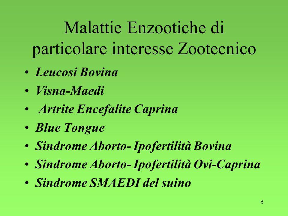 6 Malattie Enzootiche di particolare interesse Zootecnico Leucosi Bovina Visna-Maedi Artrite Encefalite Caprina Blue Tongue Sindrome Aborto- Ipofertil