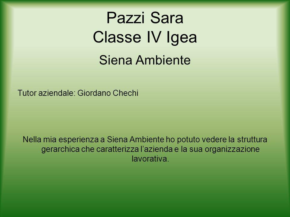 Pazzi Sara Classe IV Igea Siena Ambiente Tutor aziendale: Giordano Chechi Nella mia esperienza a Siena Ambiente ho potuto vedere la struttura gerarchi