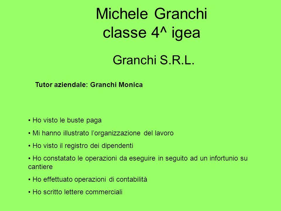 Michele Granchi classe 4^ igea Granchi S.R.L. Tutor aziendale: Granchi Monica Ho visto le buste paga Mi hanno illustrato lorganizzazione del lavoro Ho