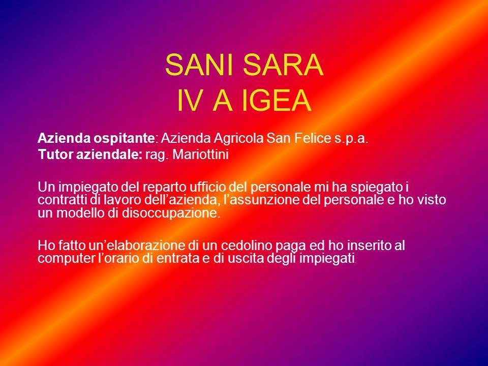 SANI SARA IV A IGEA Azienda ospitante: Azienda Agricola San Felice s.p.a. Tutor aziendale: rag. Mariottini Un impiegato del reparto ufficio del person