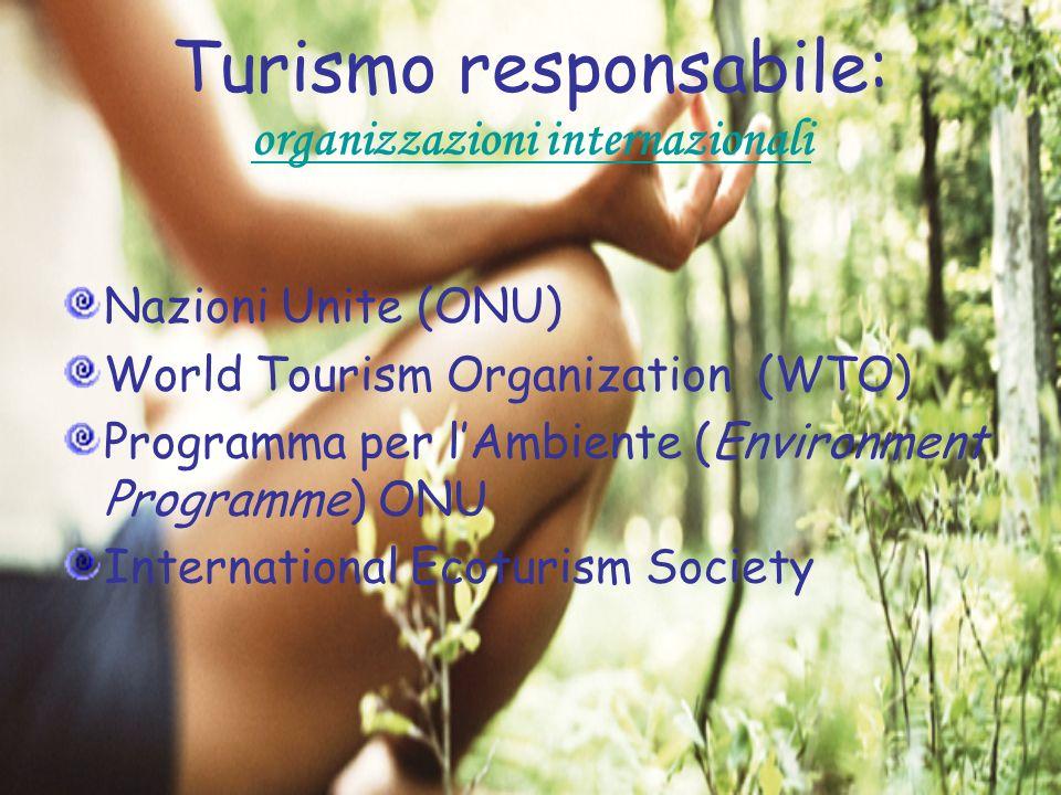 Turismo responsabile: organizzazioni internazionali Nazioni Unite (ONU) World Tourism Organization (WTO) Programma per lAmbiente (Environment Programm