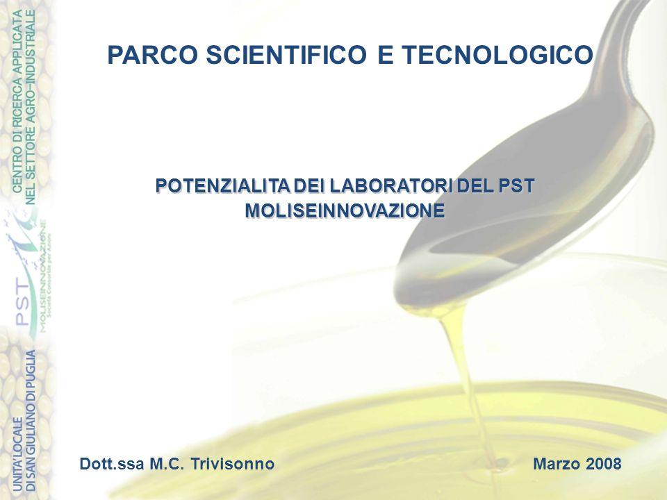 POTENZIALITA DEI LABORATORI DEL PST MOLISEINNOVAZIONE PARCO SCIENTIFICO E TECNOLOGICO Dott.ssa M.C. TrivisonnoMarzo 2008