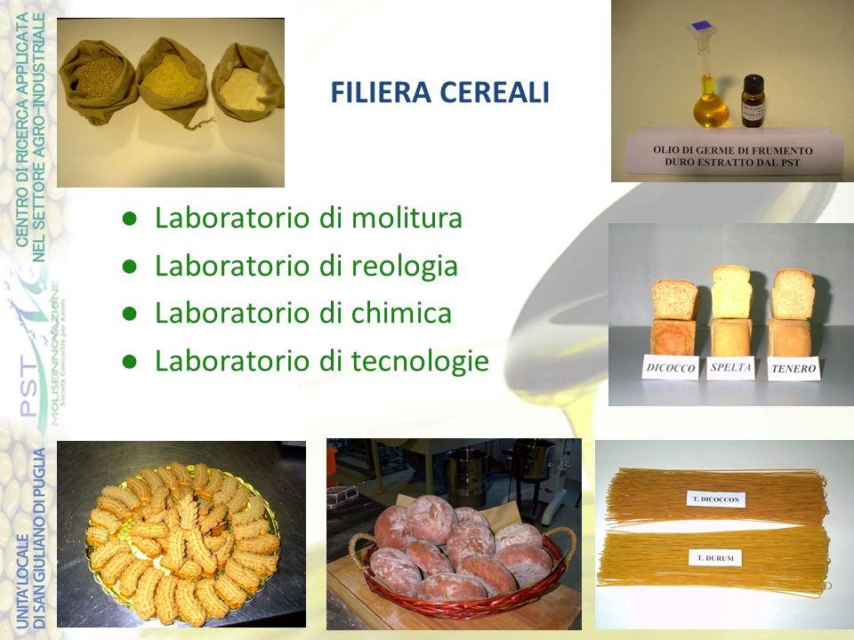 FILIERA CEREALI Laboratorio di molitura Laboratorio di reologia Laboratorio di chimica Laboratorio di tecnologie