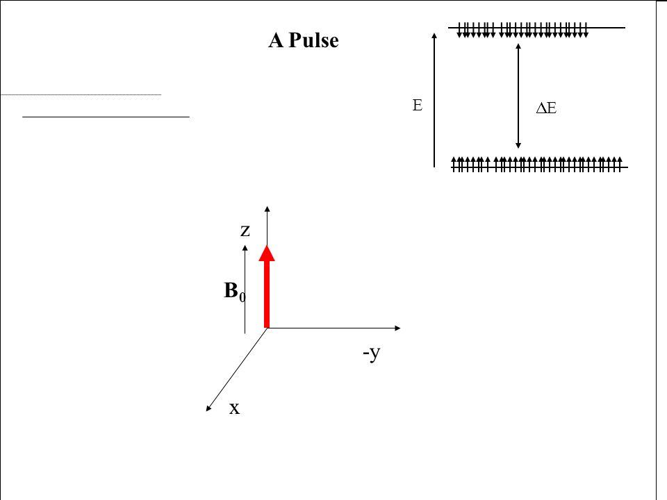 x -y z B0B0 A Pulse x E E B1B1 x -y z B0B0 A Pulse x B1B1 x -y z B0B0 A Pulse x B1B1 x -y z B0B0 A Pulse x B1B1 x -y z B0B0 A Pulse x B1B1 x -y z B0B0