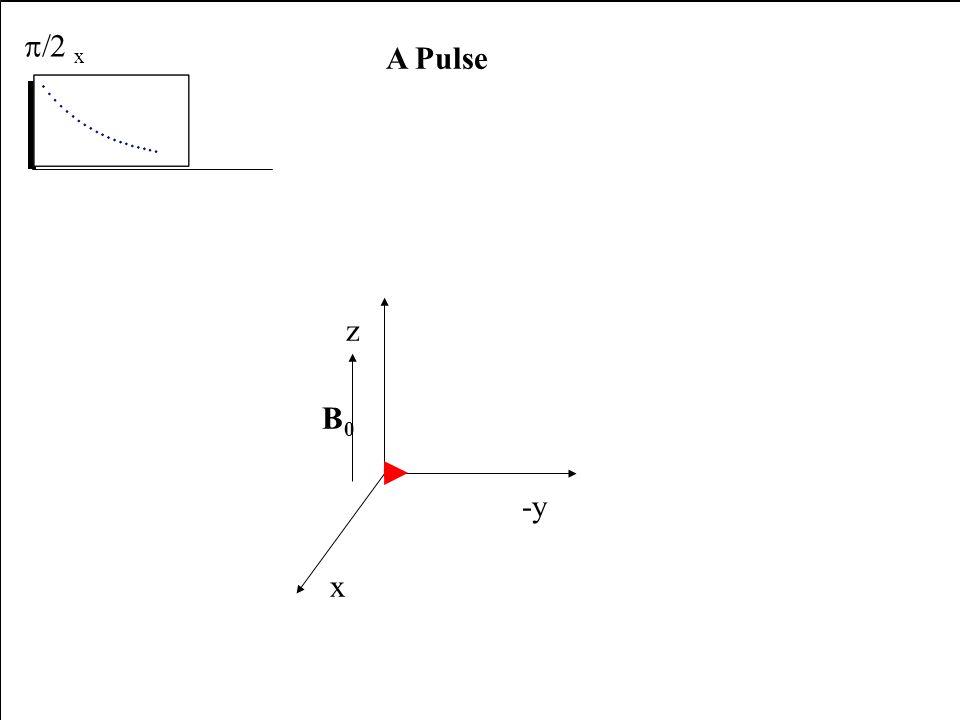 x -y z B0B0 A Pulse x E E B1B1 x -y z B0B0 A Pulse x B1B1 x -y z B0B0 A Pulse x B1B1 x -y z B0B0 A Pulse x x -y z B0B0 A Pulse x receiver x -y z B0B0