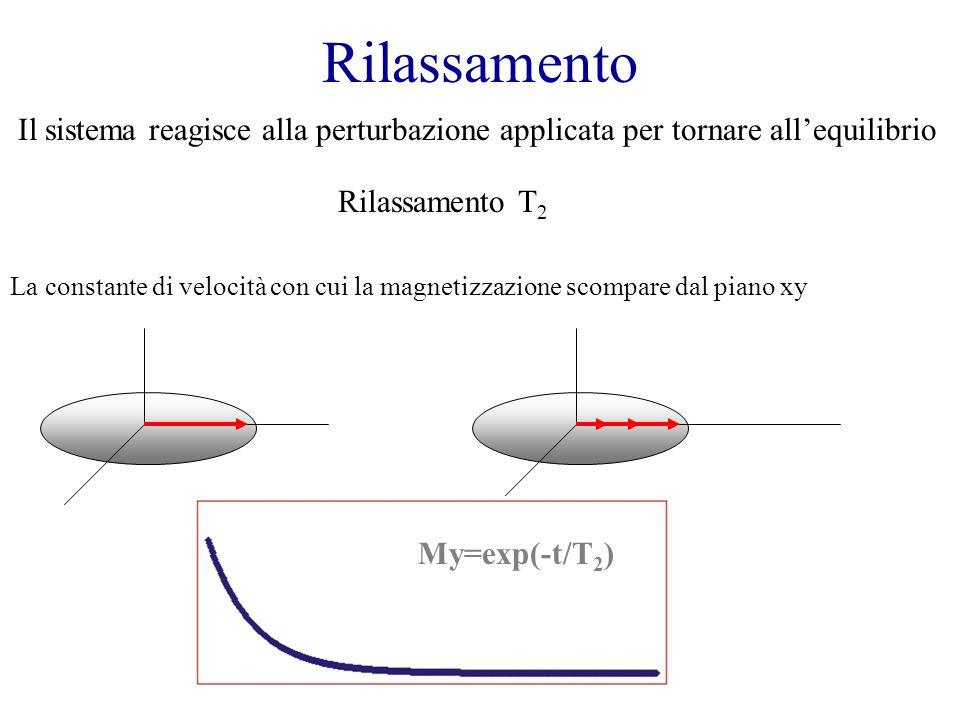 Rilassamento Il sistema reagisce alla perturbazione applicata per tornare allequilibrio Rilassamento T 2 La constante di velocità con cui la magnetizz
