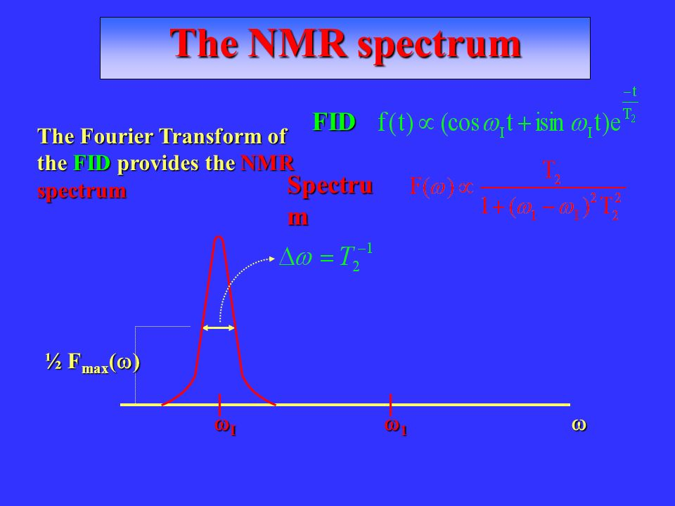 The NMR spectrum The Fourier Transform of the FID provides the NMR spectrum I 1 ½ F max ( ) FID Spectru m