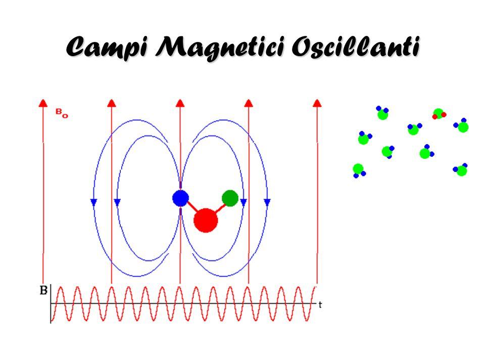 Campi Magnetici Oscillanti