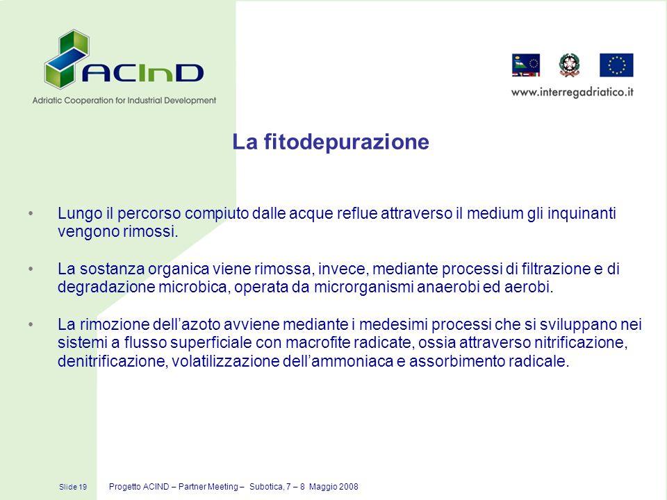 Slide 19 Progetto ACIND – Partner Meeting – Subotica, 7 – 8 Maggio 2008 La fitodepurazione Lungo il percorso compiuto dalle acque reflue attraverso il