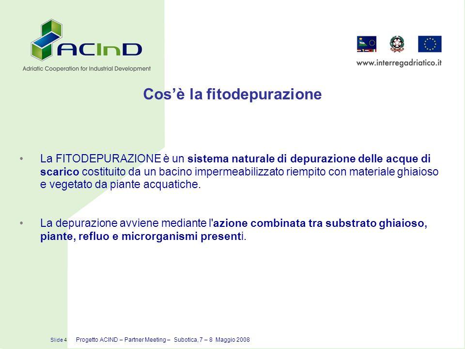 Slide 15 Progetto ACIND – Partner Meeting – Subotica, 7 – 8 Maggio 2008 La fitodepurazione Il sistema di fitodepurazione proposto nel progetto, è un sistema a flusso subsuperficiale orizzontale con la piantumazione di Phragmites Australis (cannuccia di palude) ad impianto funzionante.