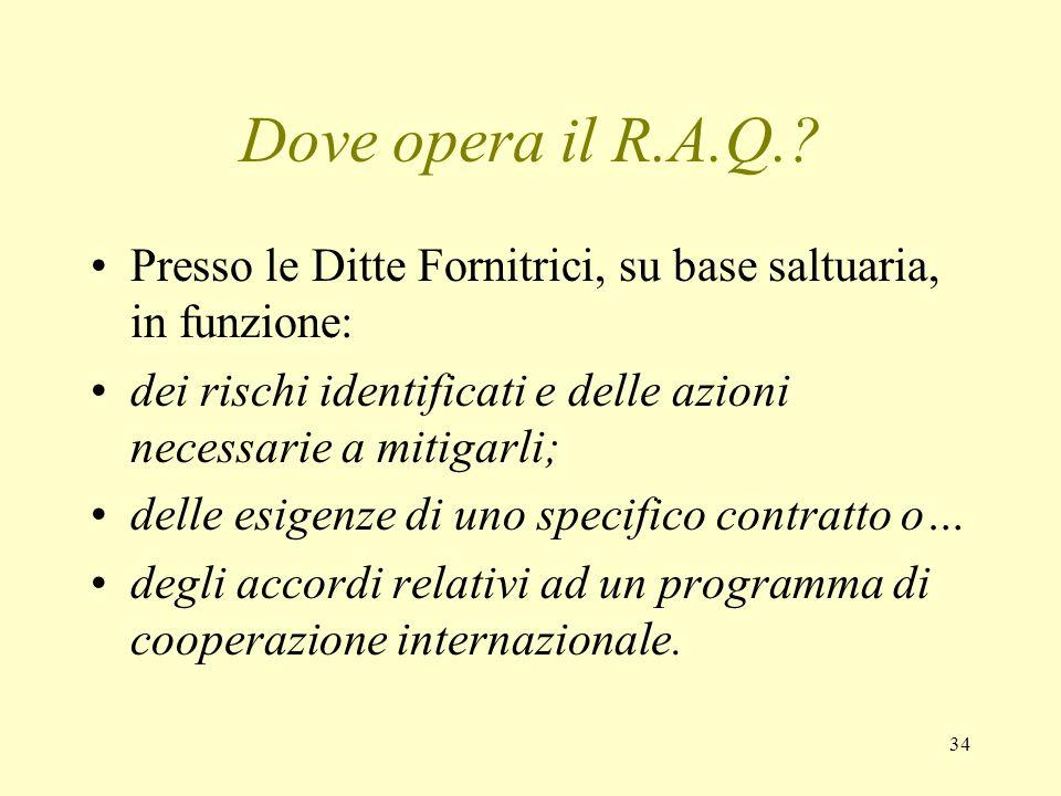 34 Dove opera il R.A.Q.? Presso le Ditte Fornitrici, su base saltuaria, in funzione: dei rischi identificati e delle azioni necessarie a mitigarli; de