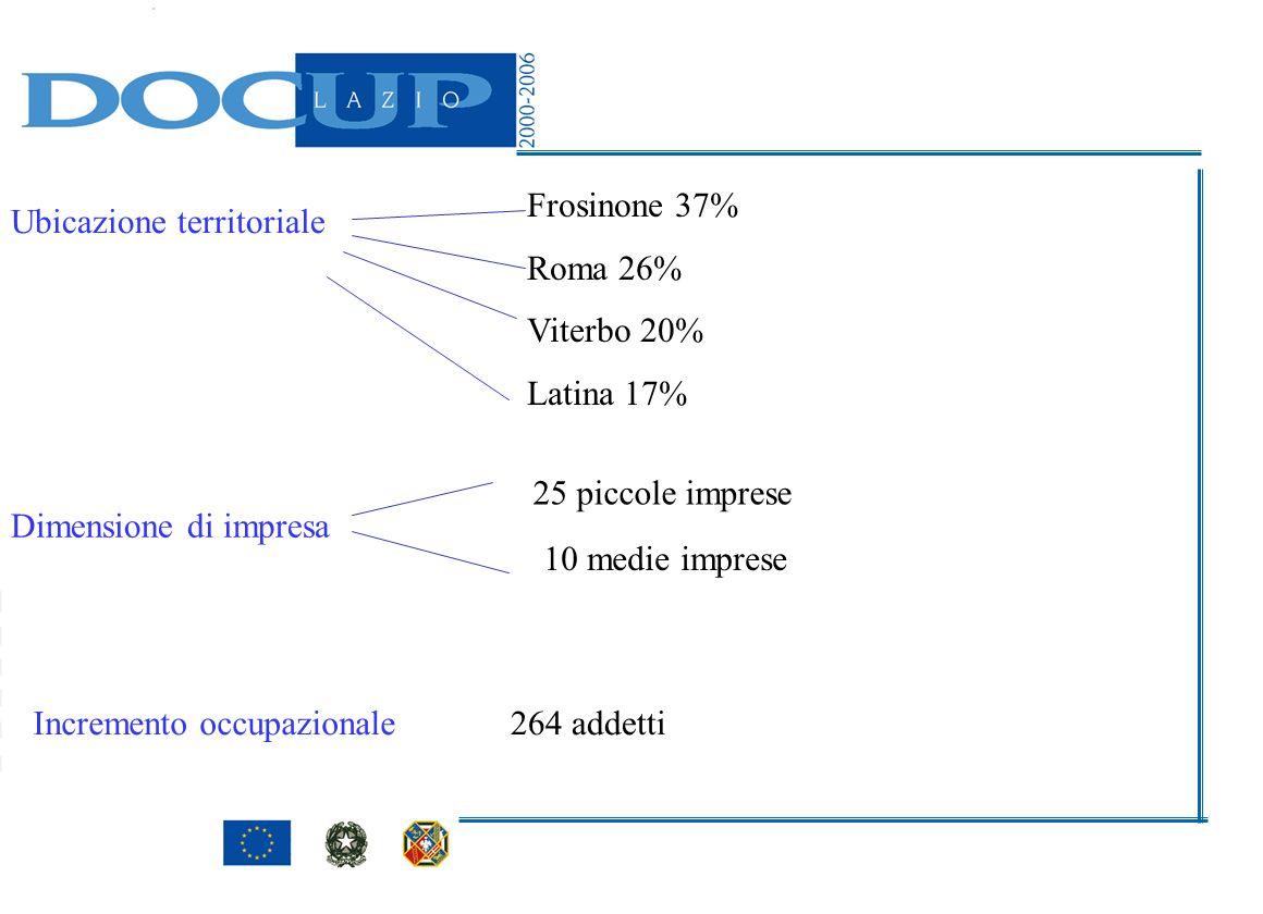 Dimensione di impresa 25 piccole imprese 10 medie imprese Incremento occupazionale264 addetti Ubicazione territoriale Frosinone 37% Roma 26% Viterbo 2