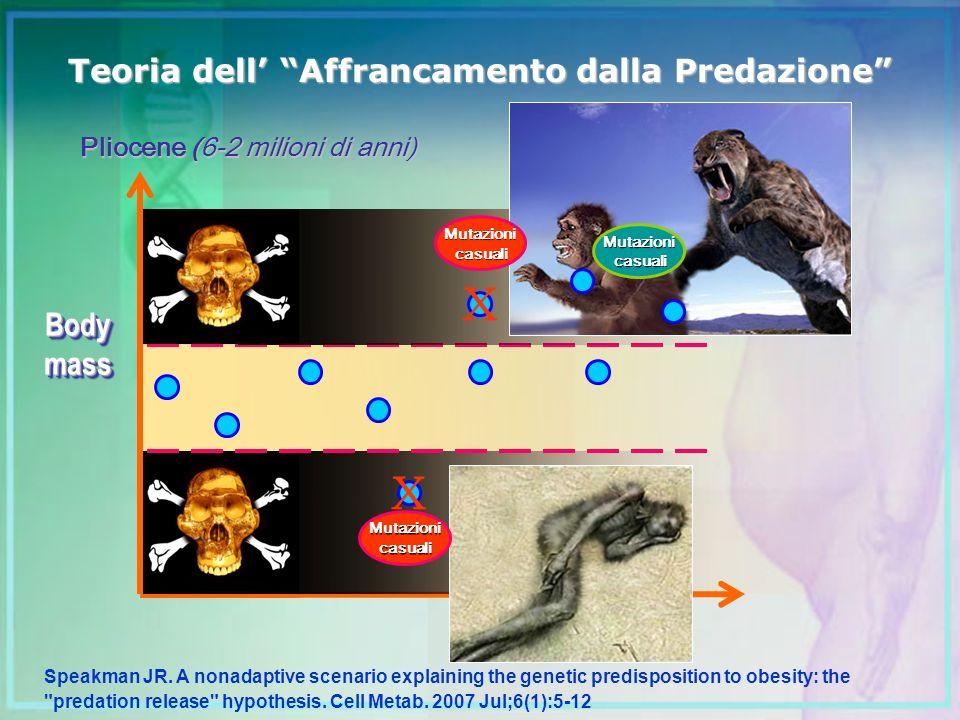 Teoria dell Affrancamento dalla Predazione BodymassBodymass Speakman JR. A nonadaptive scenario explaining the genetic predisposition to obesity: the