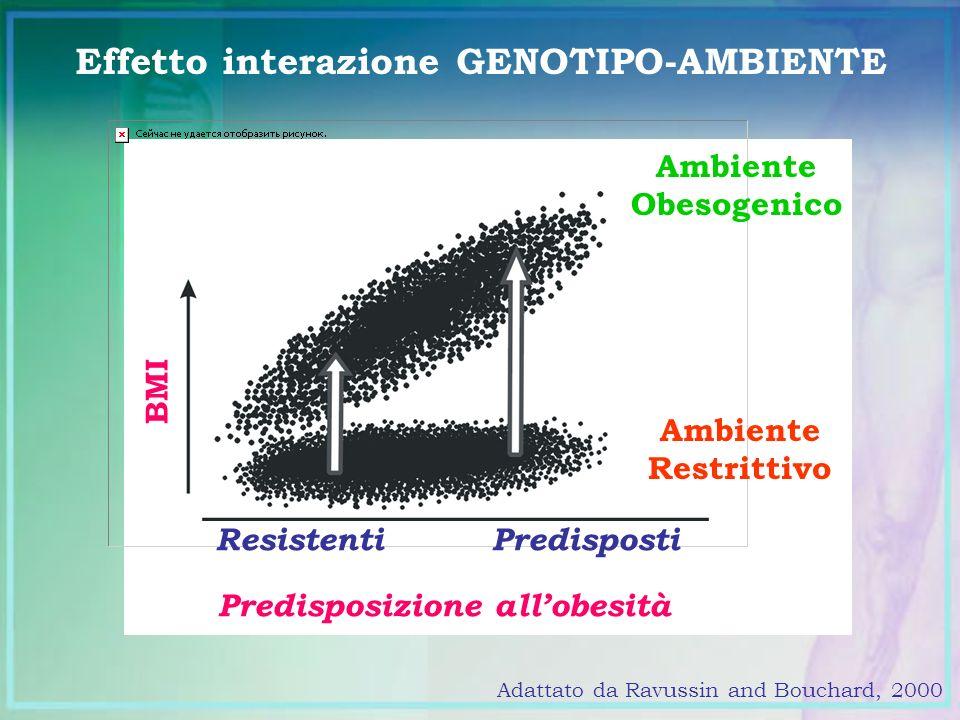 Effetto interazione GENOTIPO-AMBIENTE Adattato da Ravussin and Bouchard, 2000 Predisposizione allobesità ResistentiPredisposti BMI Ambiente Obesogenic