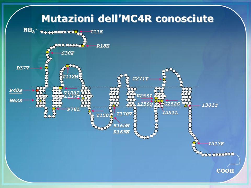 Mutazioni dellMC4R conosciute