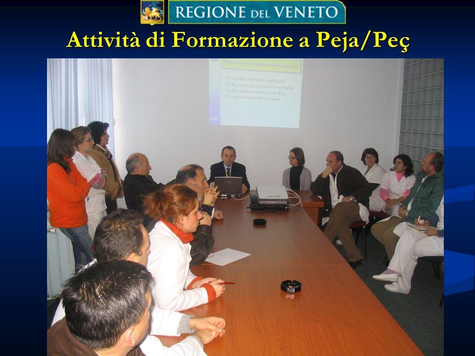 L. Bertinato, Regione Veneto, 2006 Attività di Formazione a Peja/Peç