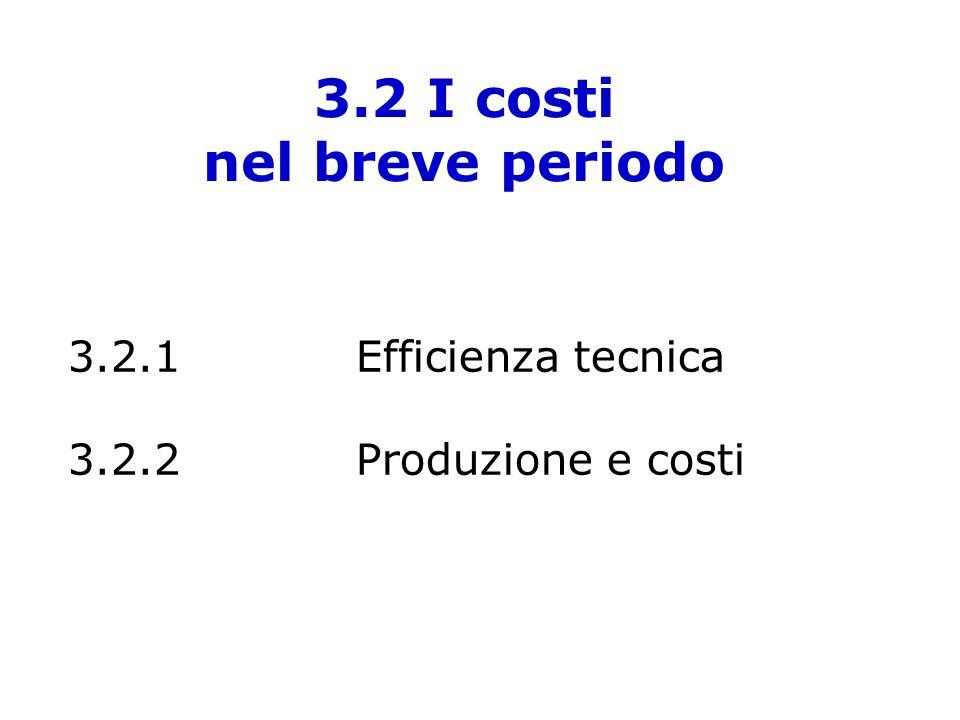 3.2 I costi nel breve periodo 3.2.1Efficienza tecnica 3.2.2Produzione e costi