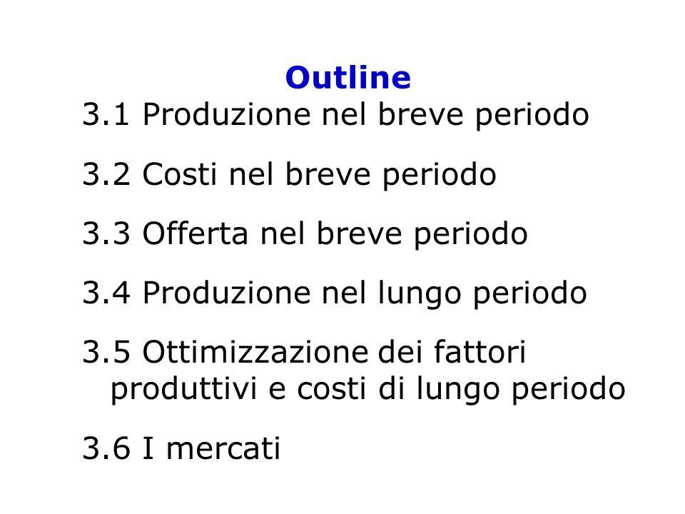 Outline 3.1 Produzione nel breve periodo 3.2 Costi nel breve periodo 3.3 Offerta nel breve periodo 3.4 Produzione nel lungo periodo 3.5 Ottimizzazione
