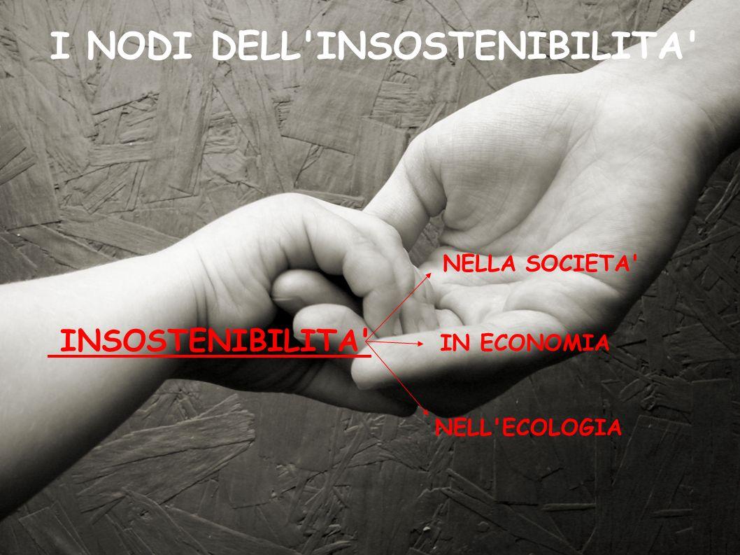 INSOSTENIBILITA' I NODI DELL'INSOSTENIBILITA' NELLA SOCIETA' IN ECONOMIA NELL'ECOLOGIA