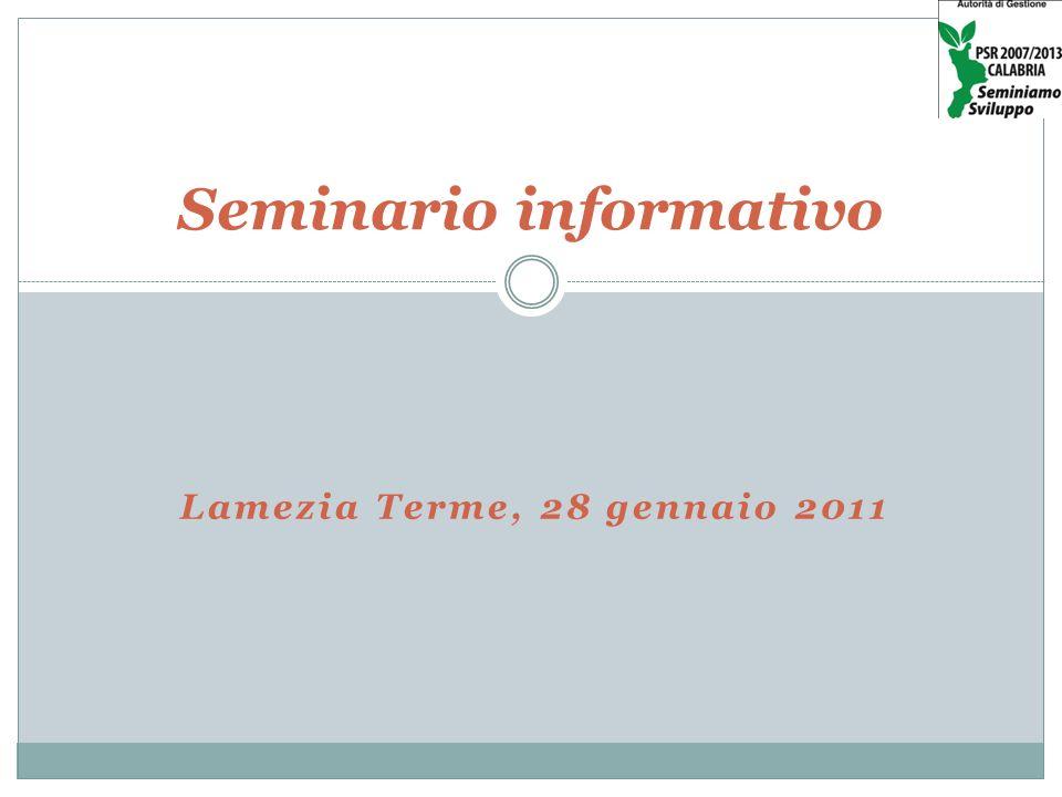 Lamezia Terme, 28 gennaio 2011 Seminario informativo