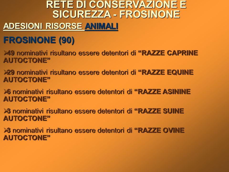 RETE DI CONSERVAZIONE E SICUREZZA - FROSINONE ADESIONI RISORSE ANIMALI FROSINONE (90) 49 nominativi risultano essere detentori di RAZZE CAPRINE AUTOCT