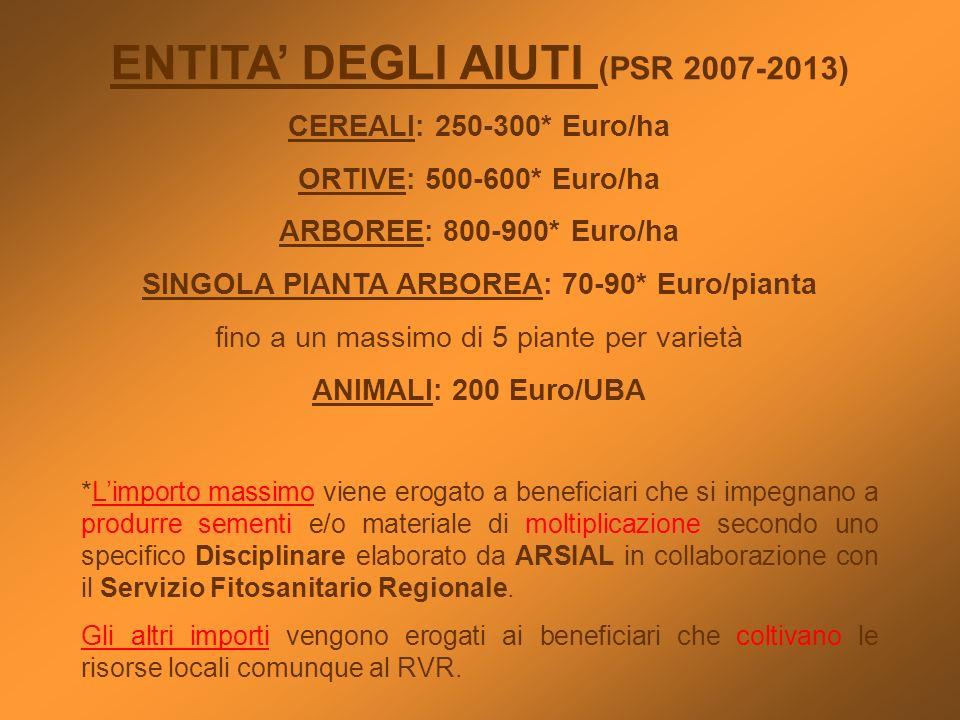 ENTITA DEGLI AIUTI (PSR 2007-2013) CEREALI: 250-300* Euro/ha ORTIVE: 500-600* Euro/ha ARBOREE: 800-900* Euro/ha SINGOLA PIANTA ARBOREA: 70-90* Euro/pi