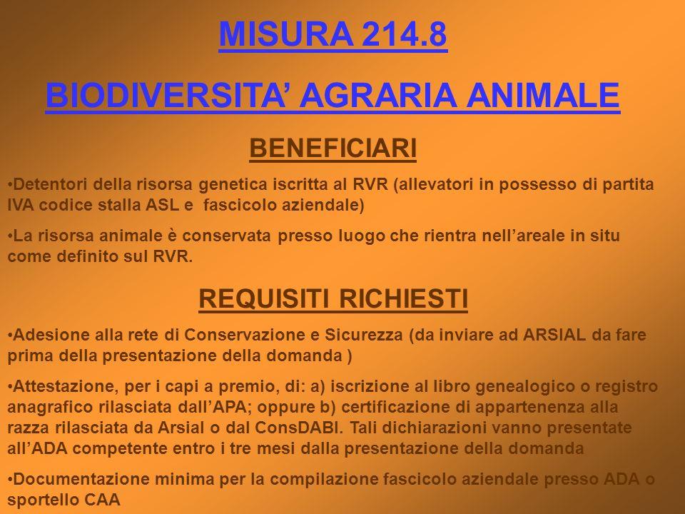 MISURA 214.8 BIODIVERSITA AGRARIA ANIMALE BENEFICIARI Detentori della risorsa genetica iscritta al RVR (allevatori in possesso di partita IVA codice s