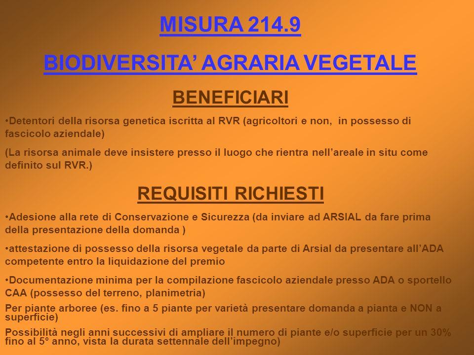 MISURA 214.9 BIODIVERSITA AGRARIA VEGETALE BENEFICIARI Detentori della risorsa genetica iscritta al RVR (agricoltori e non, in possesso di fascicolo a