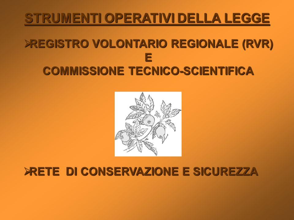 STRUMENTI OPERATIVI DELLA LEGGE REGISTRO VOLONTARIO REGIONALE (RVR) REGISTRO VOLONTARIO REGIONALE (RVR)E COMMISSIONE TECNICO-SCIENTIFICA RETE DI CONSE