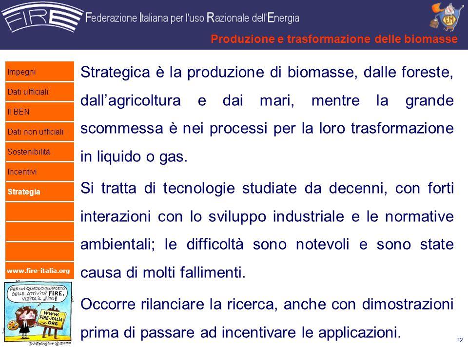 www.fire-italia.org Strategica è la produzione di biomasse, dalle foreste, dallagricoltura e dai mari, mentre la grande scommessa è nei processi per l