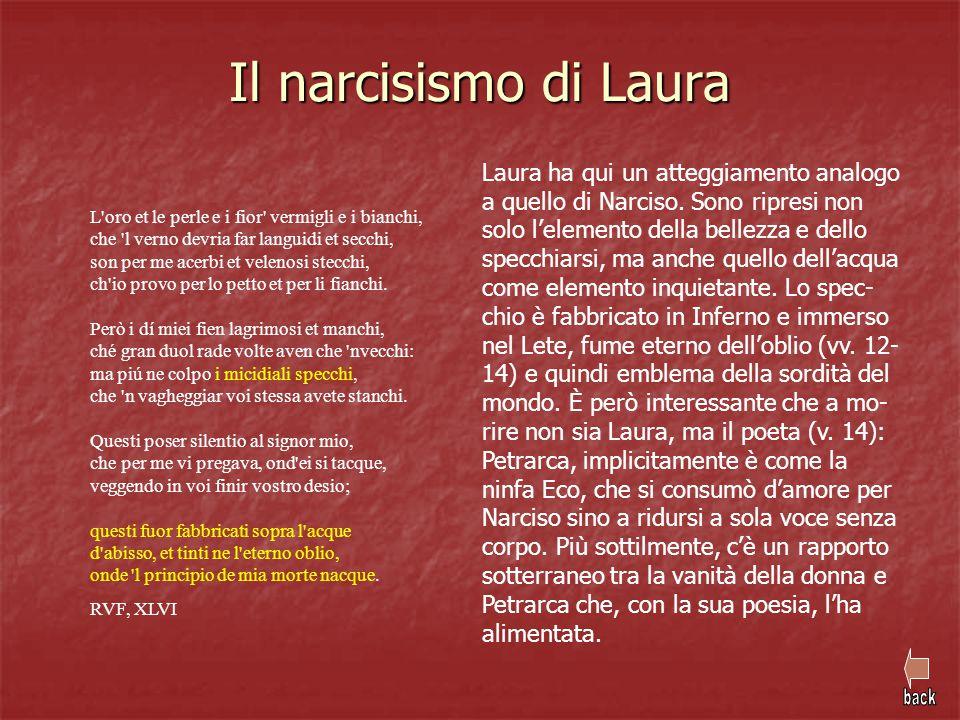 Il narcisismo di Laura L'oro et le perle e i fior' vermigli e i bianchi, che 'l verno devria far languidi et secchi, son per me acerbi et velenosi ste