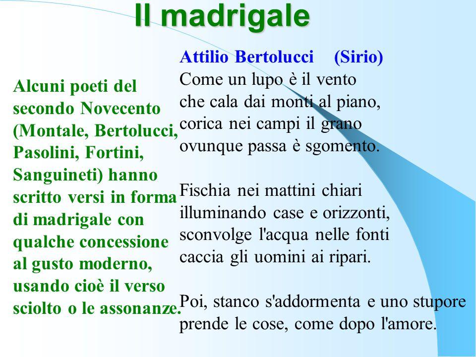 Attilio Bertolucci (Sirio) Come un lupo è il vento che cala dai monti al piano, corica nei campi il grano ovunque passa è sgomento. Fischia nei mattin