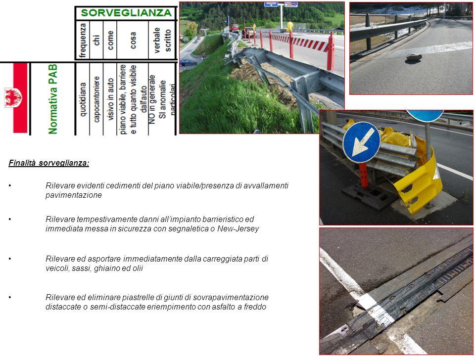 Finalità sorveglianza: Rilevare evidenti cedimenti del piano viabile/presenza di avvallamenti pavimentazione Rilevare tempestivamente danni all'impian