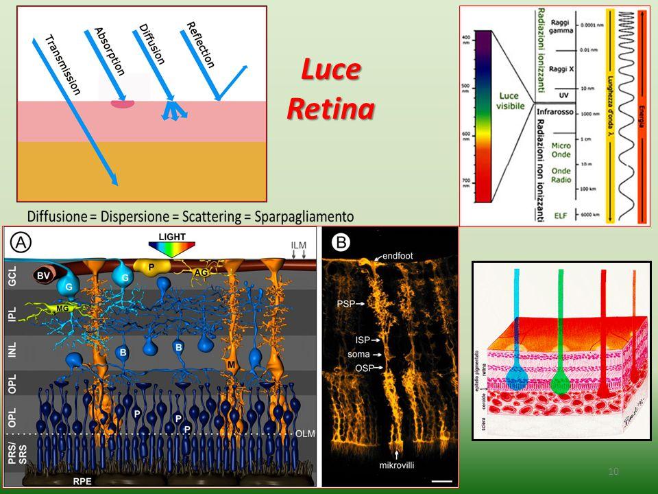 10 Luce Luce Retina Retina