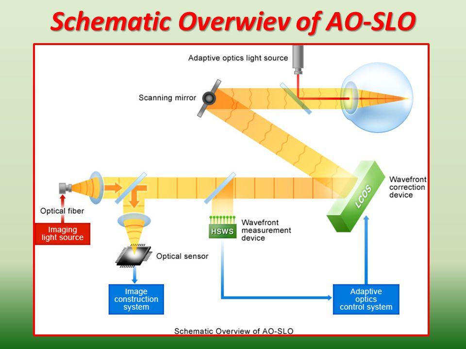 Schematic Overwiev of AO-SLO 21