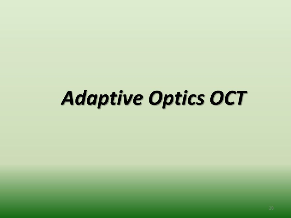 Adaptive Optics OCT 28