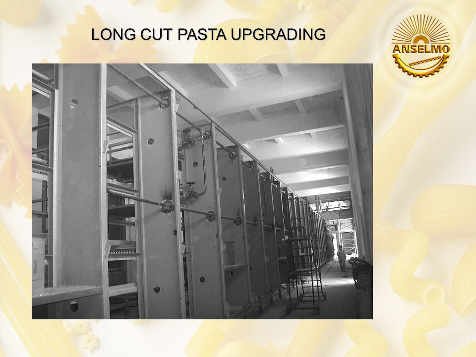 FIRST TURN KEY PASTA FACTORY SHORT CUT PASTA