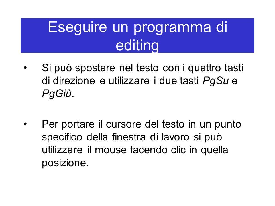 Eseguire un programma di editing Si può spostare nel testo con i quattro tasti di direzione e utilizzare i due tasti PgSu e PgGiù. Per portare il curs