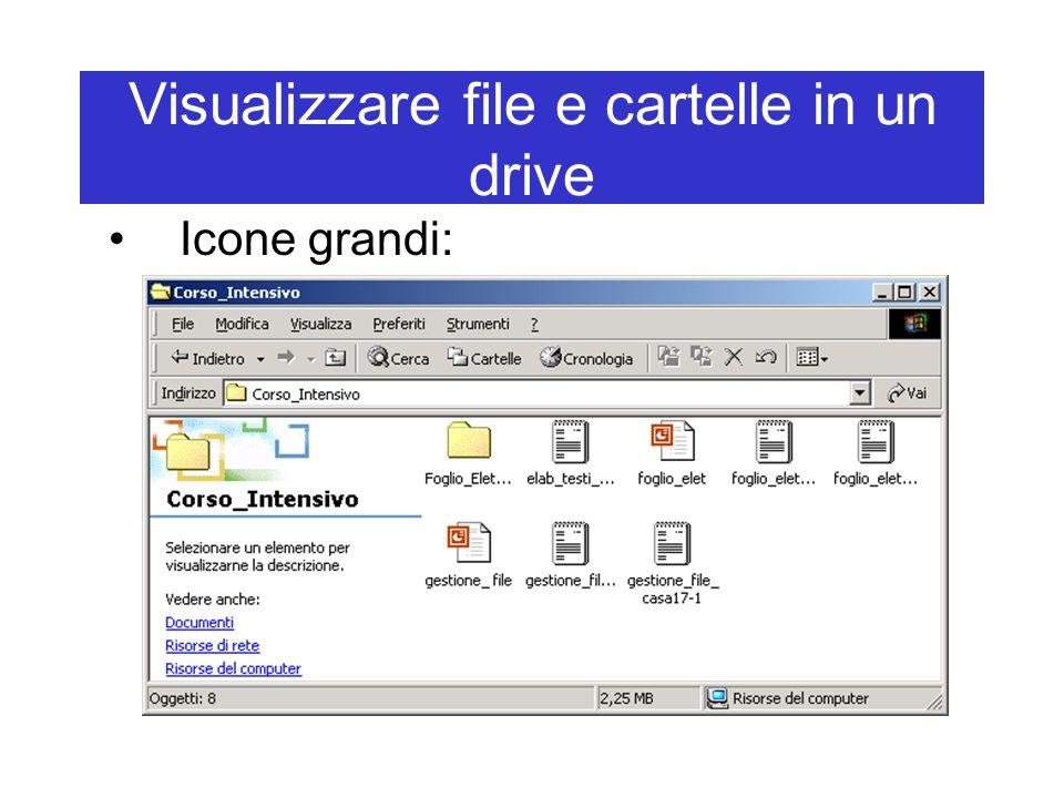 Visualizzare file e cartelle in un drive Icone grandi: